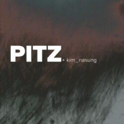 MSE: Pitz + Kim_Nasung